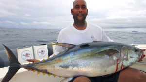 Cow Tuna with Come Fish Panama