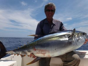 Yellowfin, Tuna