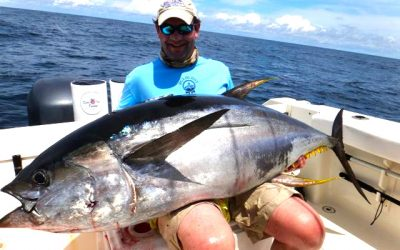 Cow Tuna, Roosterfish and more…
