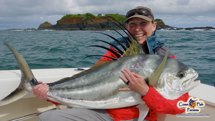 Panama 39 s best roosterfish photos come fish panama for Rooster fish pictures
