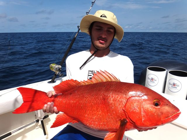 Panamas Best Red Snapper Photos - Come Fish Panama-2296