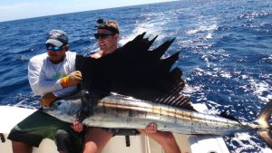Pacific Sailfish Panama