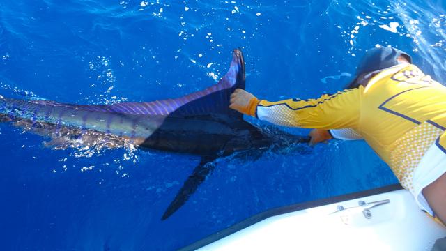 Billfish Slam Panama