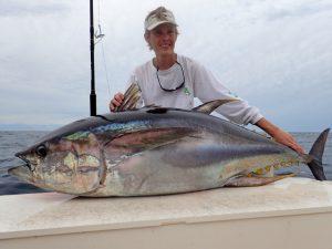 Panama Yellowfin Tuna
