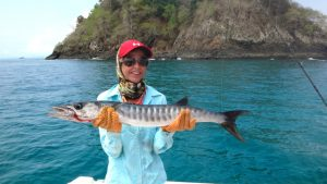 Fishing Photos, Barracuda